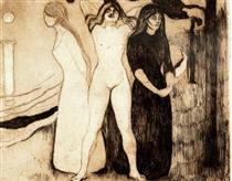 the-women-1895.jpg!PinterestSmall