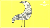 Pássaro da Alma
